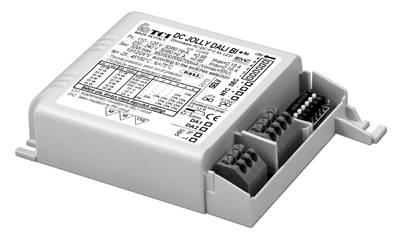 DC JOLLY DALI BI - 123458 - TCI